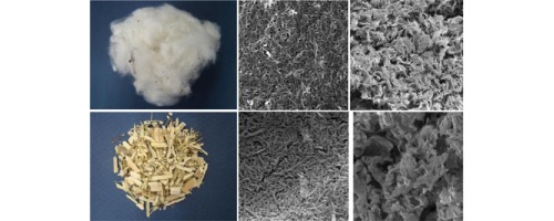 Global Cellulose nanocristalline Market